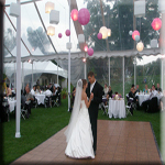 T2 Music Productions Michigan Wedding